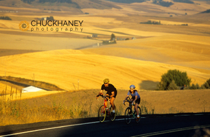 Palouse road bike