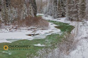 Coal_creek_winter_copy.jpg