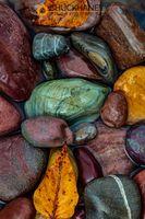 River-Rocks_006-499.jpg