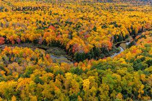 Big-Carp-River-Autumn_001-copy.jpg