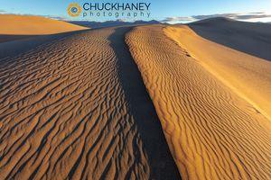 DV-Mesquite-Dunes_039-476.jpg