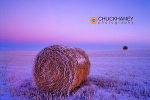 Winter Straw Bales