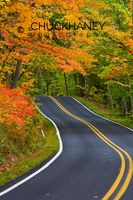 Highway 41