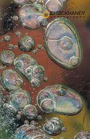 Ice-Bubbles-415.jpg