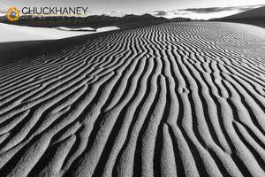 DV-Mesquite-Dunes_040bw-476.jpg