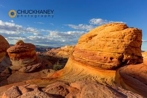 Vermillion_cliffs_115_copy.jpg