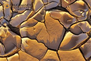 Mud Cracks, Death Valley