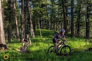 Whitefish trail Woods