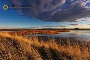 Freezeout-Wetlands_002-507.jpg