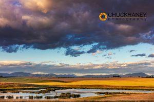 Flathead-Wetlands_006-copy.jpg