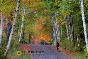 Mtn biker along gravel road with autumn color