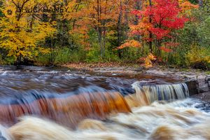 Sturgeon-River-Autumn_004-468.jpg