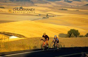 Palouse road bike