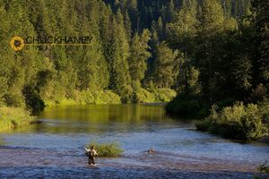 Idaho Fly fish