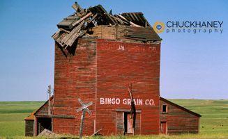 Bingo Grain Company