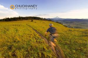 Mountain Biking, Whoopdee Trail, Mt Hood