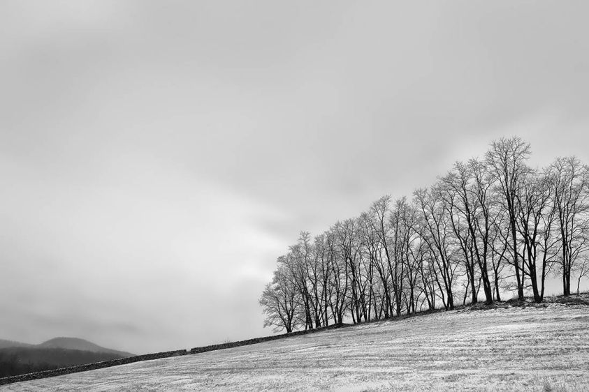 1adj_goldsworthy_s_winter_wall_mountainville_ny
