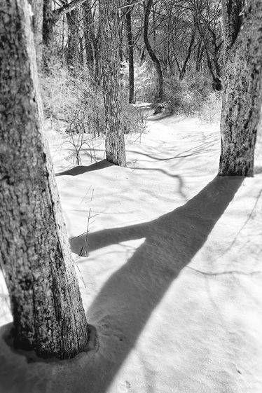 4_0_678_1bw_snowblind_priesterspond.jpg