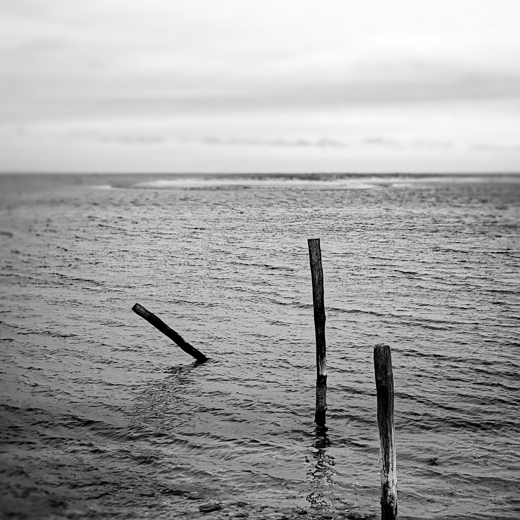 Once A Dock, Eel Pond, Edgartown, MA,  2016