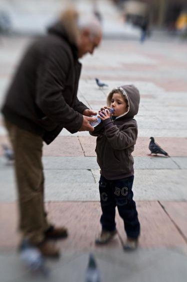 2_0_447_1feedingtime_piazzamaggorie_7929_bologna_032409.jpg