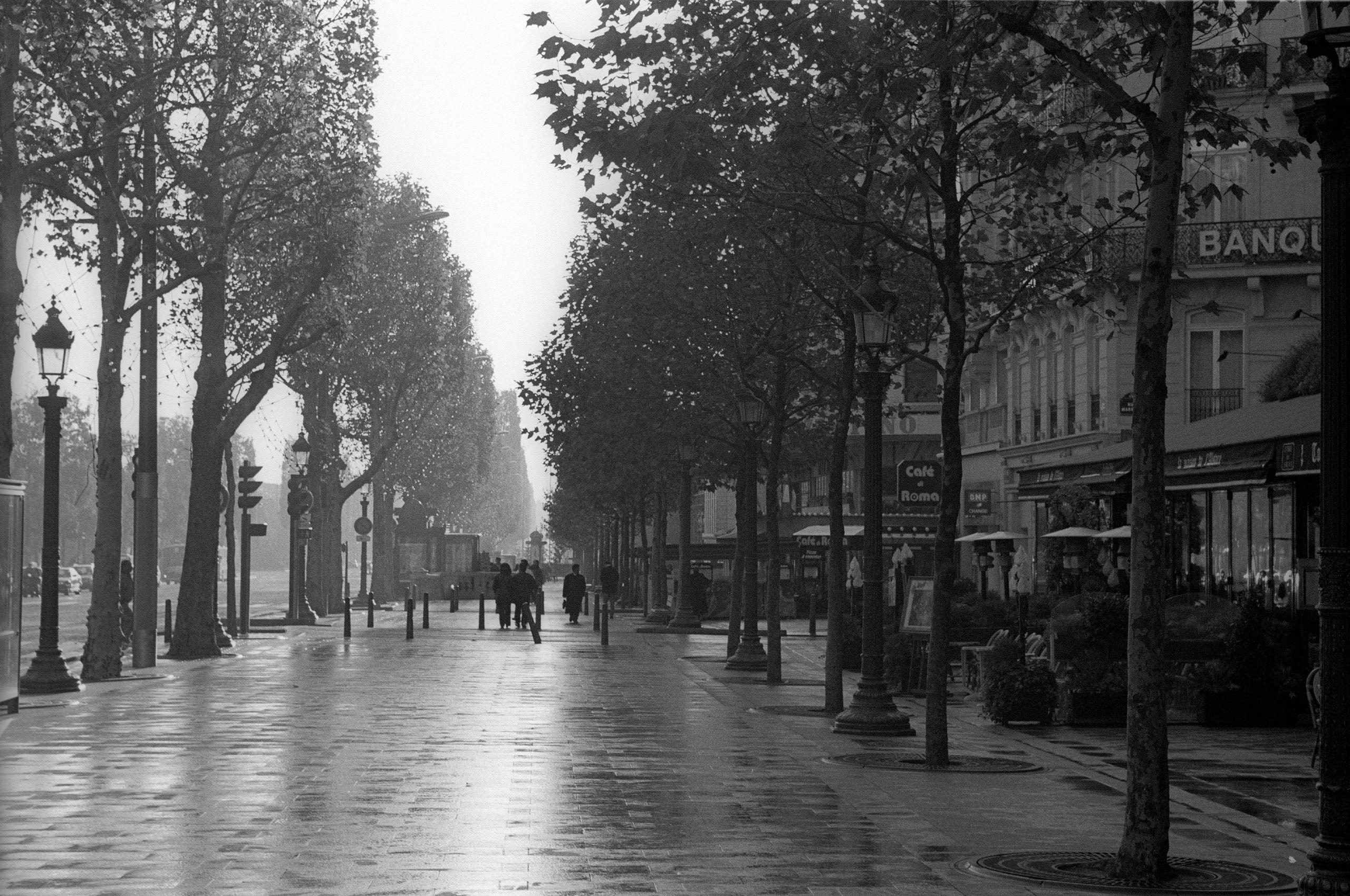ChampsParis site.jpg