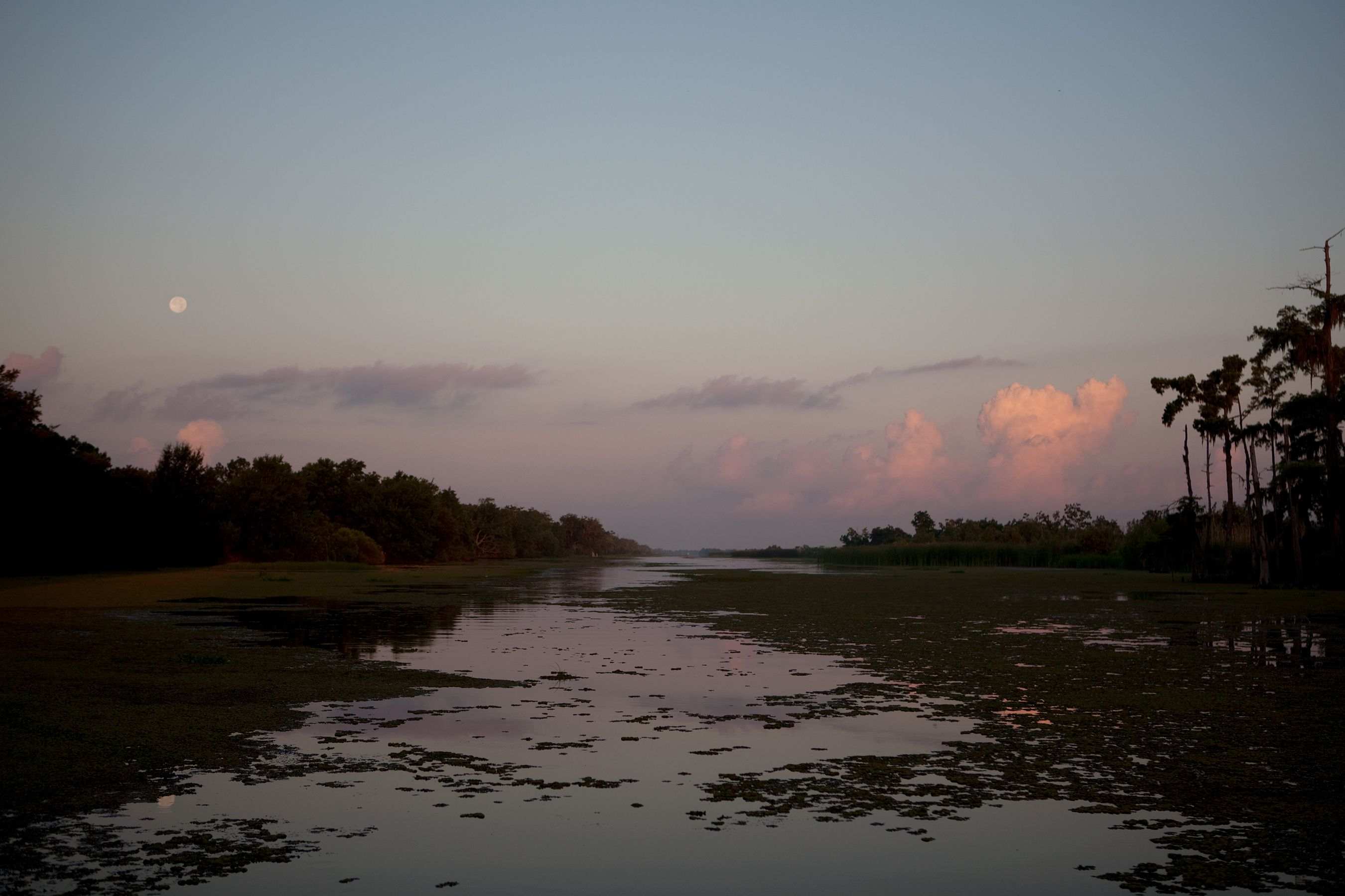 la.wetlands.sunrise.414.jpg
