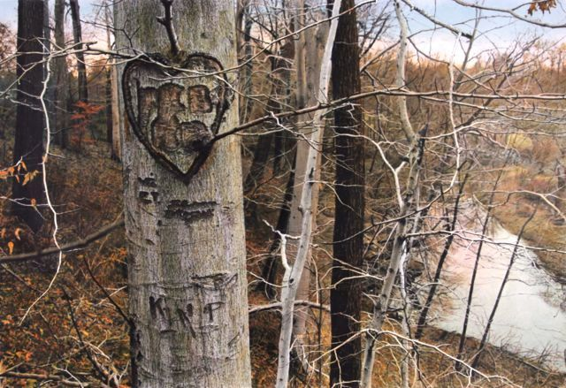 overgrown carved tree,  jenkintown, pa, 1981