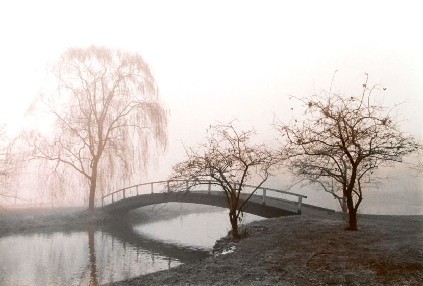 little bridge, 1984