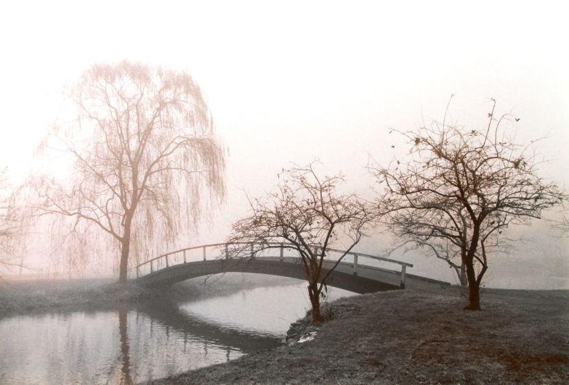 little bridge, 1984