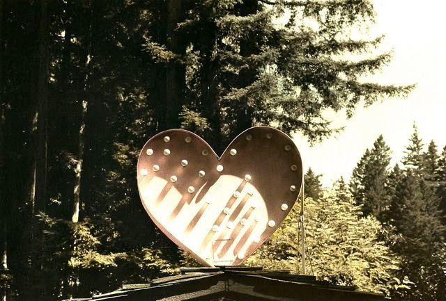 motel, redwoods, ca, 1982
