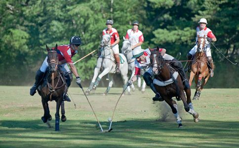 Polo match at Myopia Polo Grounds in Wenham, Mass.