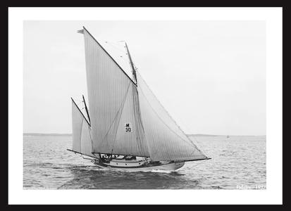 Fidelio - 1897 - Cat Yawl - Vintage Art Print Sailboat Restoration