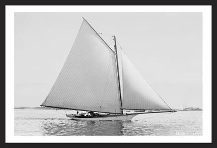 Hornet - 1891 - Vintage Sailboat Art Print