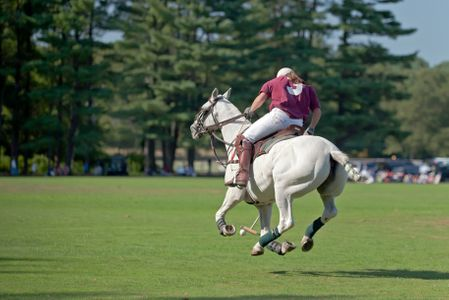 Polo match at Myopia Polo Grounds in Wenham