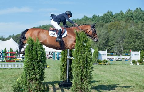 Professional Jumper Classic Event