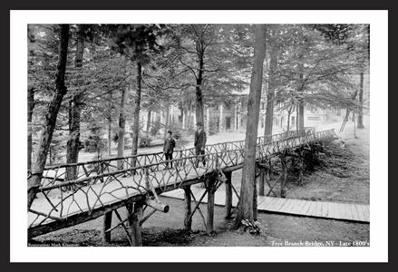 Tree Branch Bridge - NY - Late 1800s