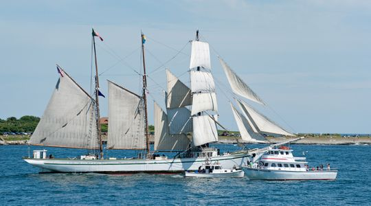 Gazela at Parade of Sail in Newport RI