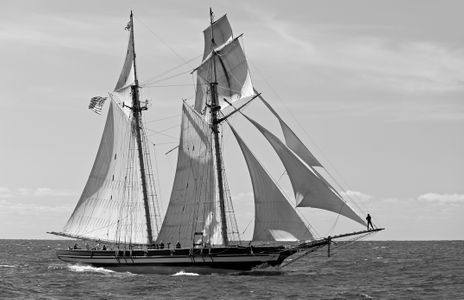Schooner Pride of Baltimore II art print
