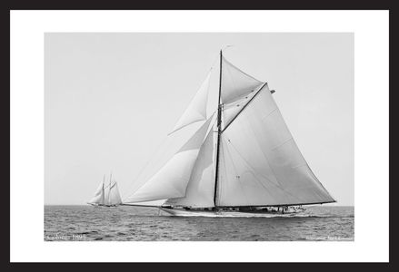 Sloop Colonia 1895 - Vintage Sailboats