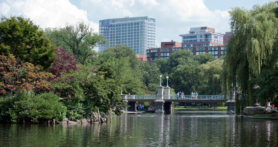 Boston Common duck pond and foot bridge
