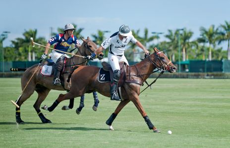 Polo match in Wellington, FL