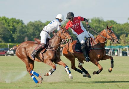 Polo match in Wellington Florida U.S. Open - photography art print