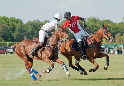 Polo match in Wellington Florida U.S. Open - photography art print