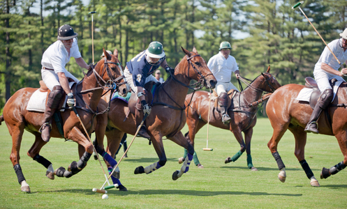 Myopia polo match action in Wenham, MA