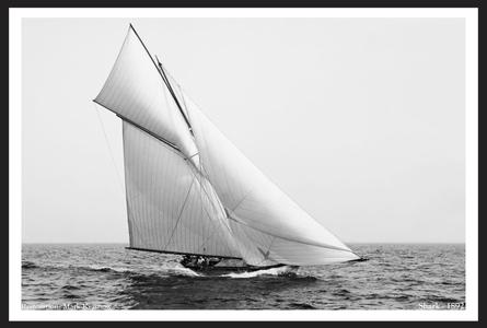 Vintage Sailboats Art Print Restoration - Shark 1892