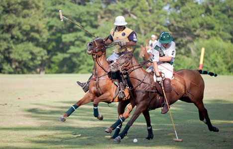 Polo match Myopia in Wenham, MA photography art print