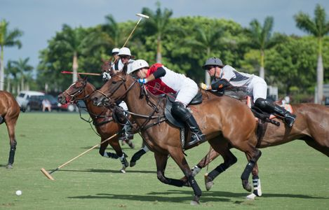Professional Polo match at the U.S. Open in Wellington, FLn