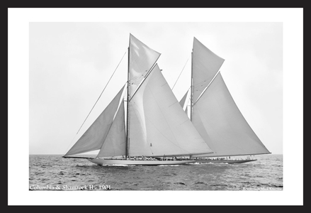 America's Cup - Columbia & Shamrock II -1901 - black and white historic sailing photography art print restoration