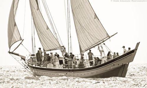 Pinky Schooner Ardelle - Sailboat art print for home and office b&w