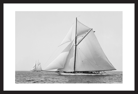 America's Cup - Vintage Sailboats - Colonia 1895 - Art Prints  for Home & Office Interiors